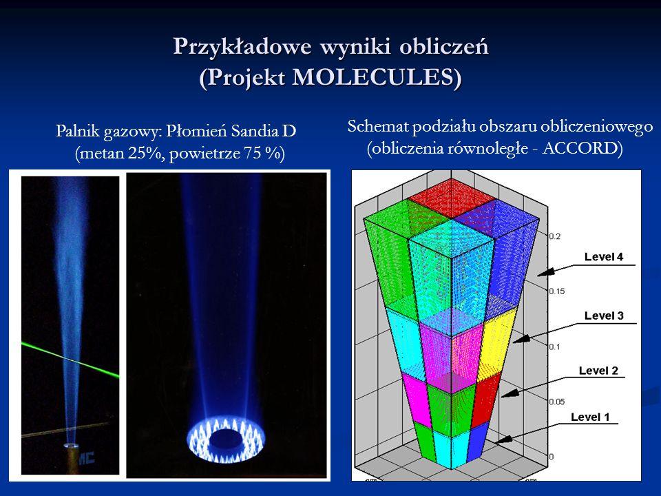 Przykładowe wyniki obliczeń (Projekt MOLECULES) Palnik gazowy: Płomień Sandia D (metan 25%, powietrze 75 %) Schemat podziału obszaru obliczeniowego (obliczenia równoległe - ACCORD)