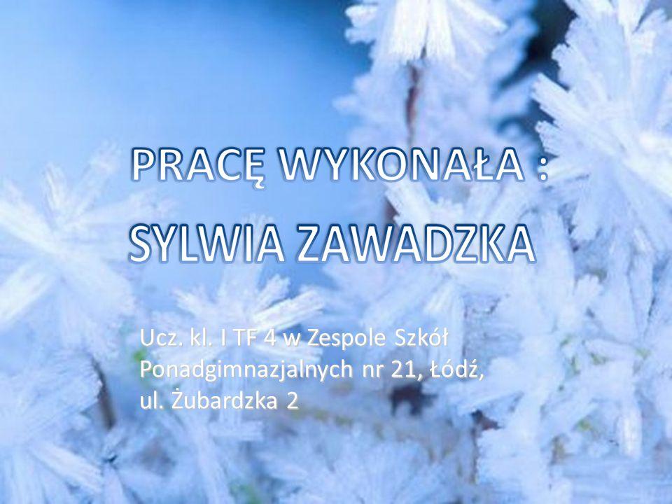 Ucz. kl. I TF 4 w Zespole Szkół Ponadgimnazjalnych nr 21, Łódź, ul. Żubardzka 2