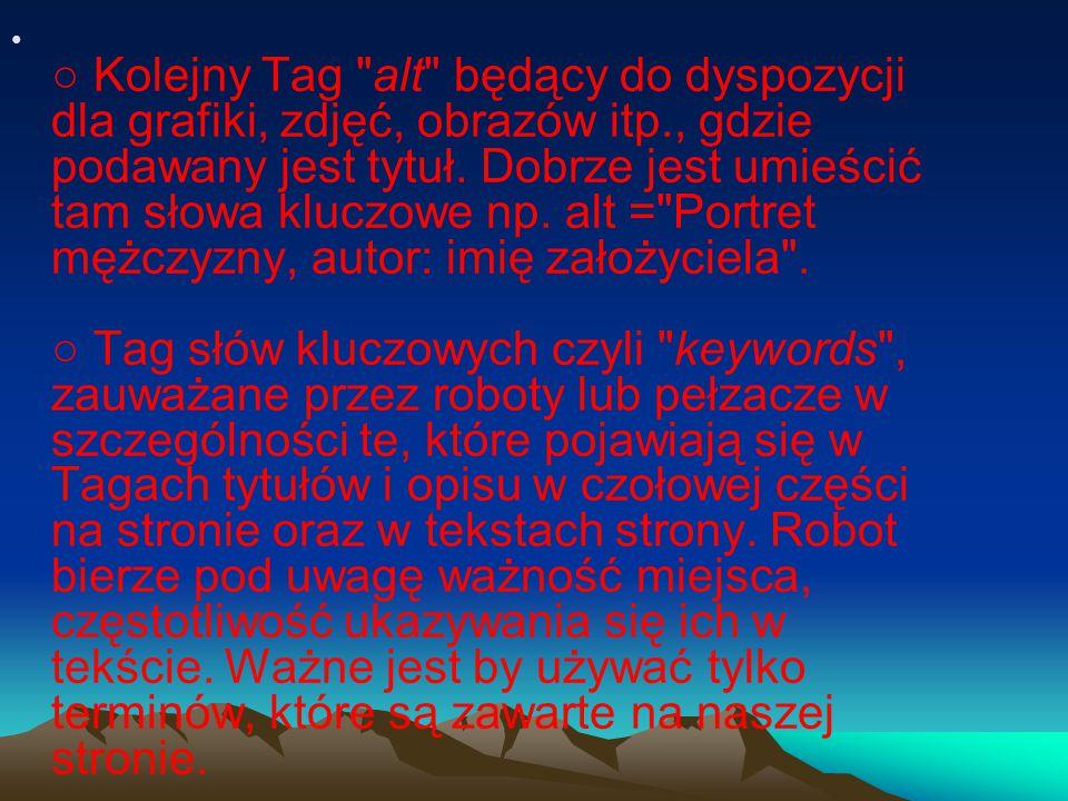 ○ Teksty w, właściwości strony oraz wszystkie informacje lub dane w Meta Tags.
