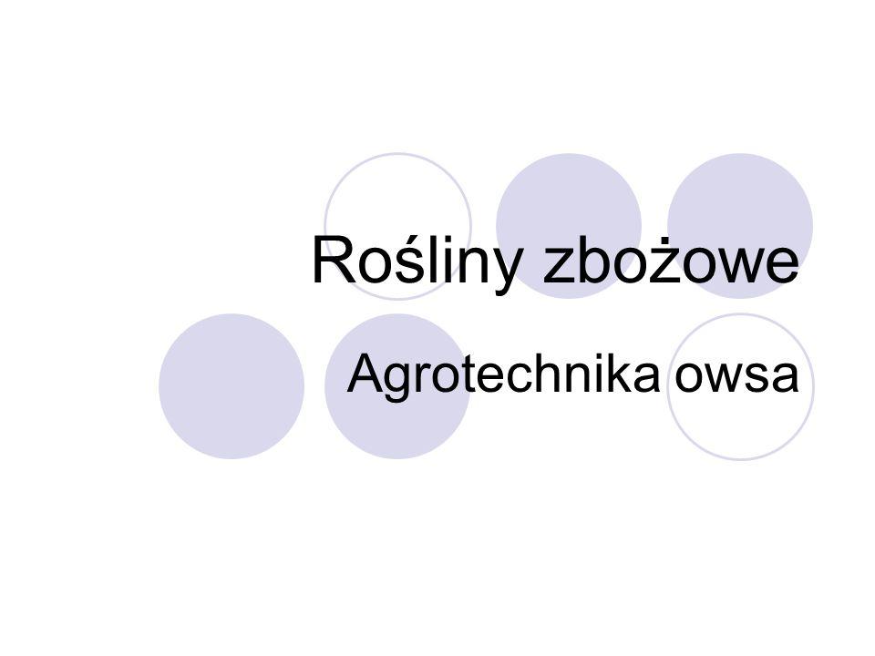 Rośliny zbożowe Agrotechnika owsa