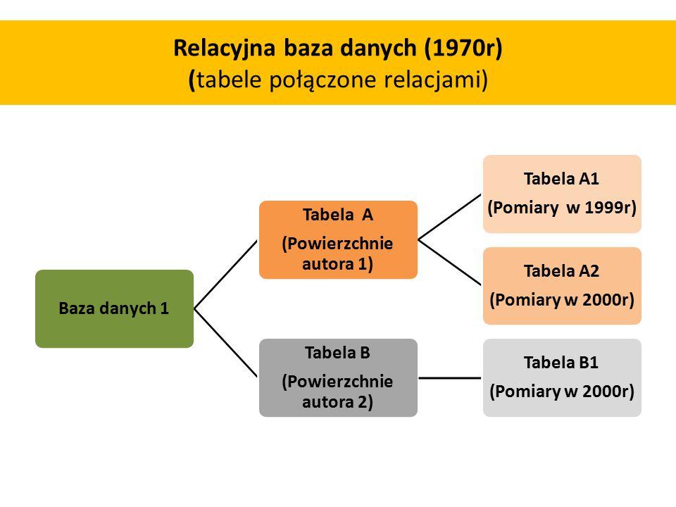 Relacyjna baza danych (1970r) (tabele połączone relacjami) Baza danych 1 Tabela A (Powierzchnie autora 1) Tabela A1 (Pomiary w 1999r) Tabela A2 (Pomiary w 2000r) Tabela B (Powierzchnie autora 2) Tabela B1 (Pomiary w 2000r)
