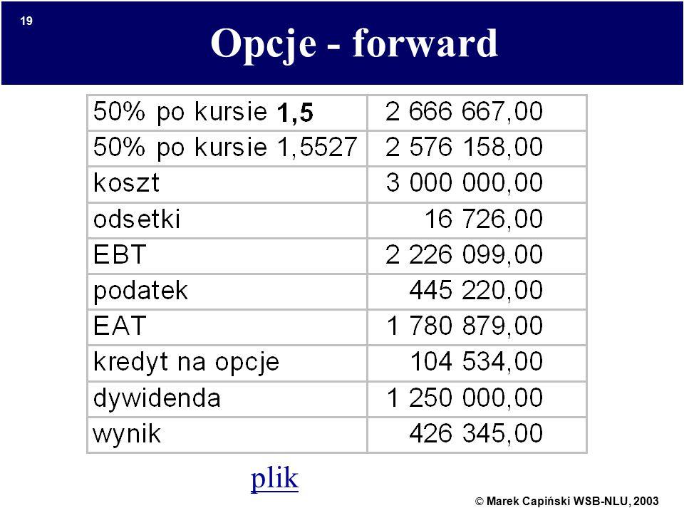 © Marek Capiński WSB-NLU, 2003 19 Opcje - forward plik