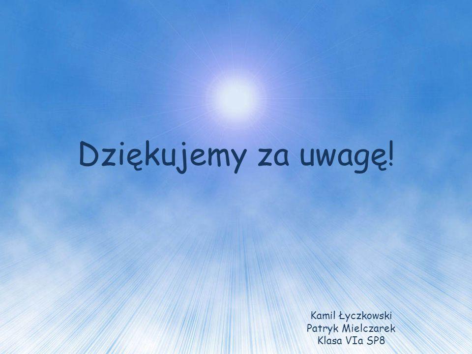 Dziękujemy za uwagę! Kamil Łyczkowski Patryk Mielczarek Klasa VIa SP8