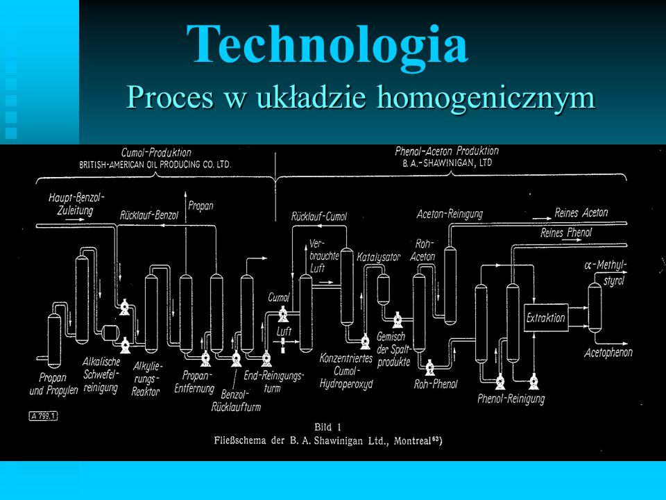 Technologia Proces w układzie homogenicznym