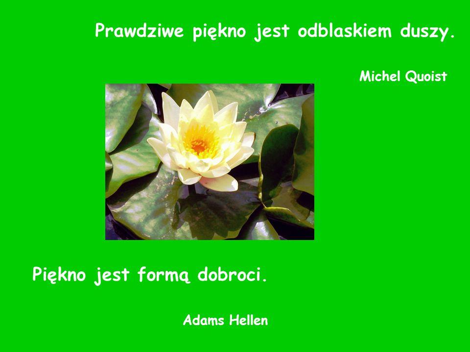 Prawdziwe piękno jest odblaskiem duszy. Michel Quoist Piękno jest formą dobroci. Adams Hellen