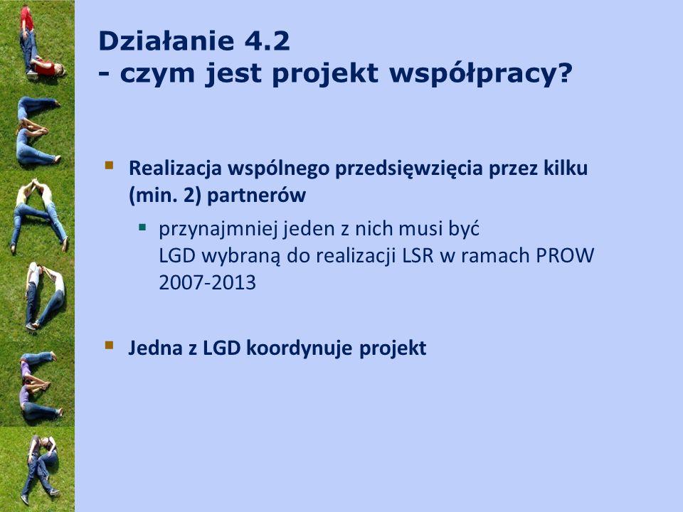 Realizacja projektu współpracy – kryteria wyboru c.d.