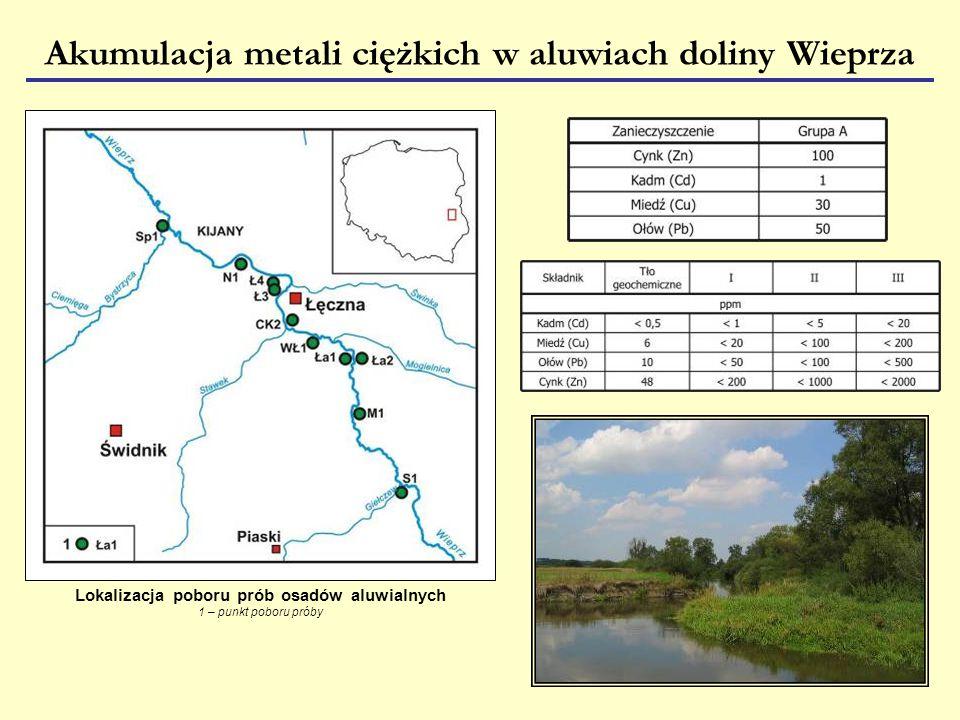Akumulacja metali ciężkich w aluwiach doliny Wieprza Lokalizacja poboru prób osadów aluwialnych 1 – punkt poboru próby