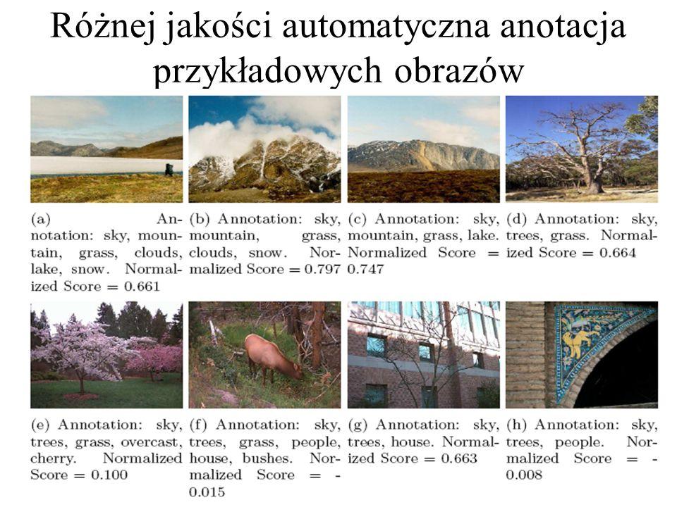 Podział obrazu na regiony będący kluczem do procesu auto-anotacji Obraz poddawany auto-anotacji Obraz podzielony na regiony do auto-anotacji