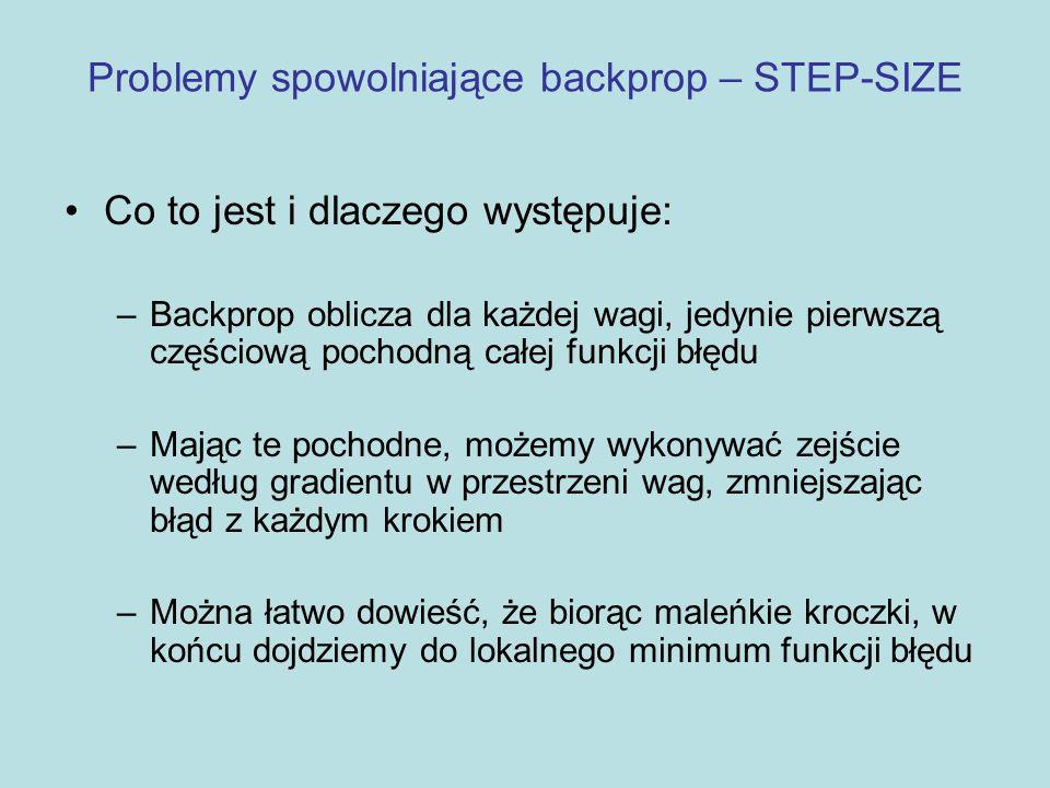 Problemy spowolniające backprop – STEP-SIZE Aby szybko uczyć sieć, nie chcemy brać malutkich kroczków, tylko największe jakie możemy Niestety, jeśli weźmiemy za duży krok, sieć może nie zbiec się do dobrego rozwiązania Żeby wybrać rozsądny krok, musimy znać nie tylko nachylenie funkcji błędu, ale również jej krzywiznę w pobliżu bierzącego punktu w przestrzeni wag Takich informacji mogą dostarczyć pochodne wyższych rzędów Takie informacje nie są dostępne w standardowym backprop'ie