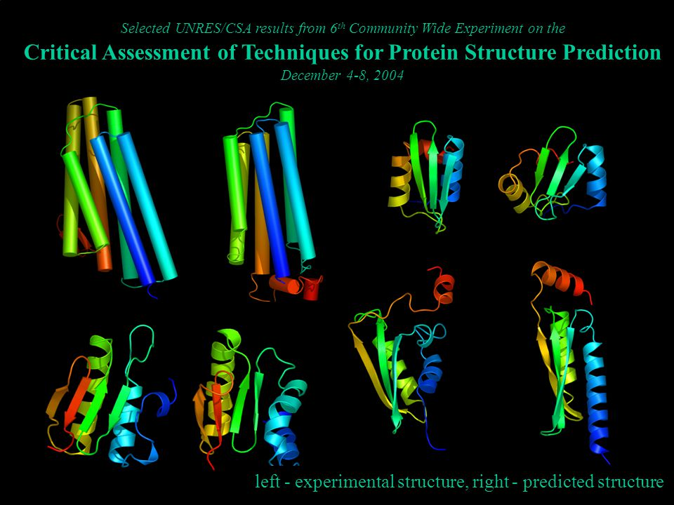 Selected UNRES/CSA results from 6 th Community Wide Experiment on the Critical Assessment of Techniques for Protein Structure Prediction December 4-8, 2004 left - experimental structure, right - predicted structure