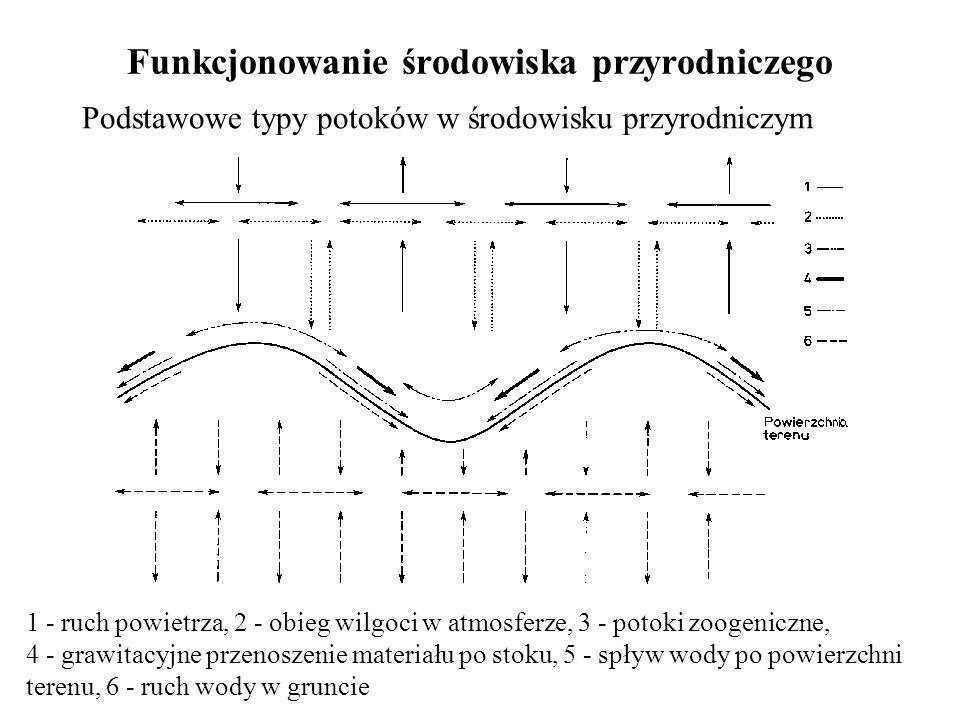 Funkcjonowanie środowiska przyrodniczego Podstawowe typy potoków w środowisku przyrodniczym 1 - ruch powietrza, 2 - obieg wilgoci w atmosferze, 3 - po