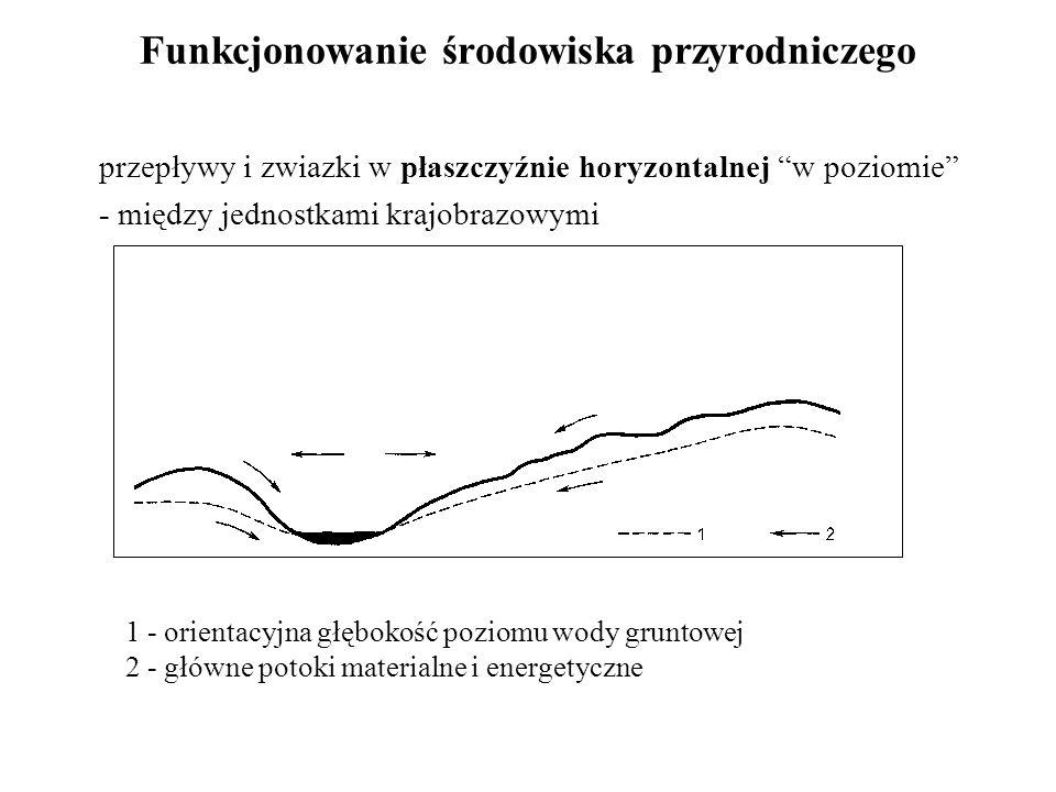 """Funkcjonowanie środowiska przyrodniczego przepływy i zwiazki w płaszczyźnie horyzontalnej """"w poziomie"""" - między jednostkami krajobrazowymi 1 - orienta"""