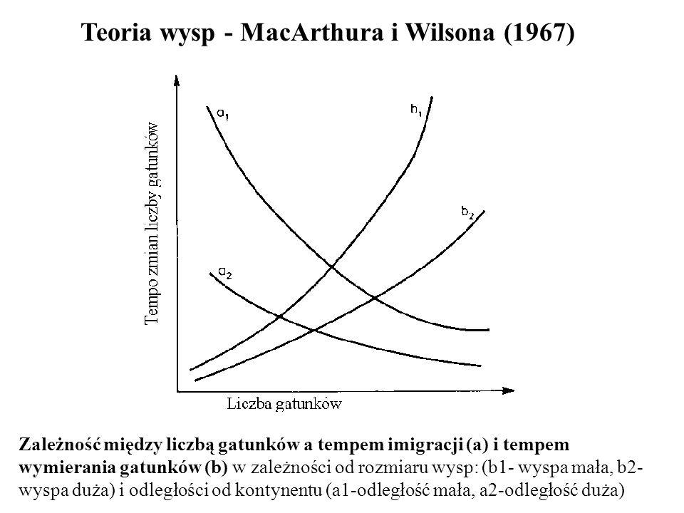 Teoria wysp - MacArthura i Wilsona (1967) Zależność między liczbą gatunków a tempem imigracji (a) i tempem wymierania gatunków (b) w zależności od roz