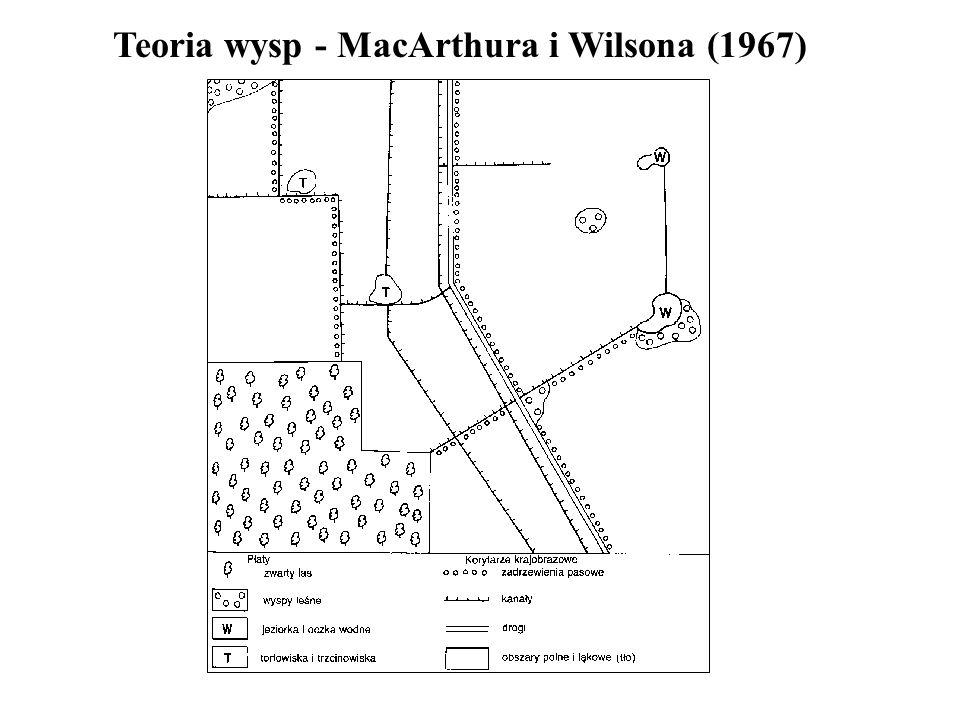 Teoria wysp - MacArthura i Wilsona (1967)