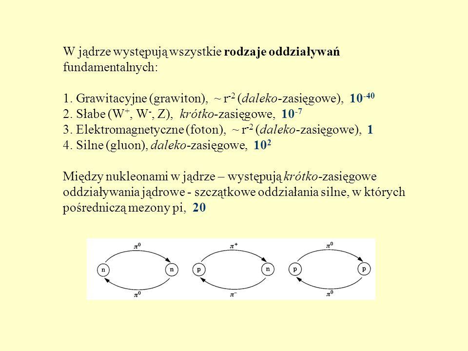 W jądrze występują wszystkie rodzaje oddziaływań fundamentalnych: 1. Grawitacyjne (grawiton), ~ r -2 (daleko-zasięgowe), 10 -40 2. Słabe (W +, W -, Z)