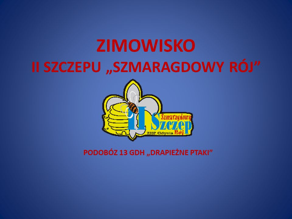 """ZIMOWISKO II SZCZEPU """"SZMARAGDOWY RÓJ PODOBÓZ 13 GDH """"DRAPIEŻNE PTAKI"""