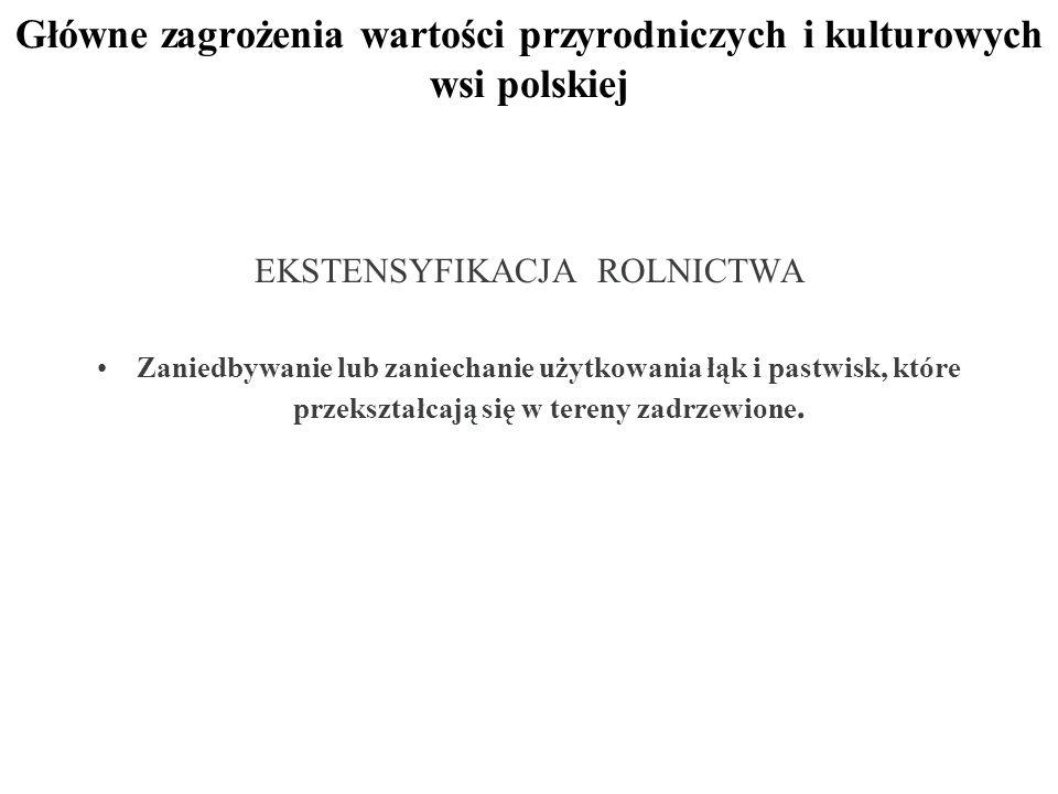 Główne zagrożenia wartości przyrodniczych i kulturowych wsi polskiej EKSTENSYFIKACJA ROLNICTWA Zaniedbywanie lub zaniechanie użytkowania łąk i pastwisk, które przekształcają się w tereny zadrzewione.