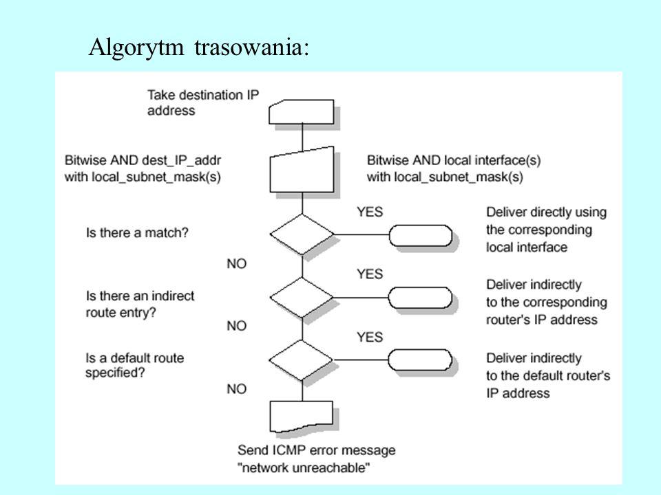 Algorytm trasowania: