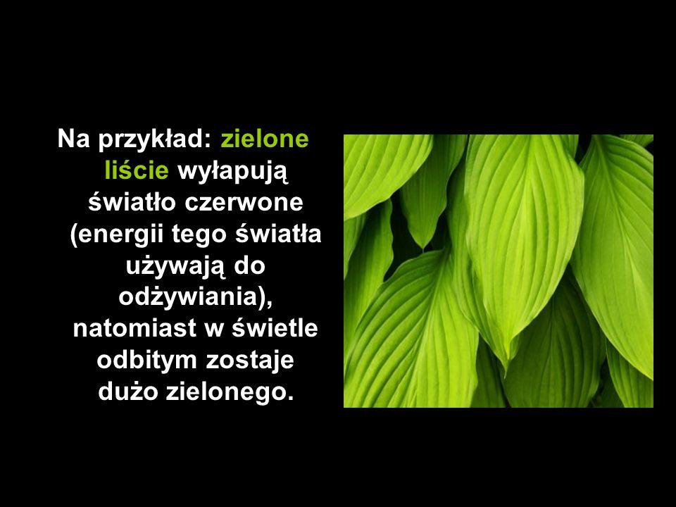 Na przykład: zielone liście wyłapują światło czerwone (energii tego światła używają do odżywiania), natomiast w świetle odbitym zostaje dużo zielonego