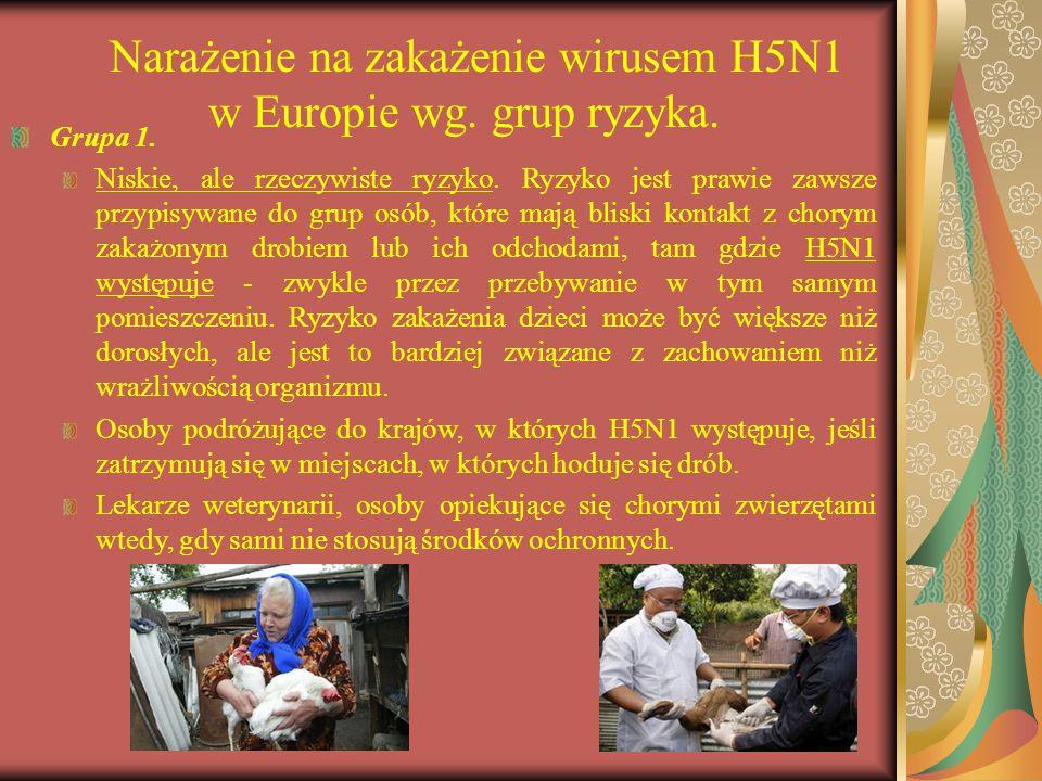 Narażenie na zakażenie wirusem H5N1 w Europie wg. grup ryzyka. Grupa 1. Niskie, ale rzeczywiste ryzyko. Ryzyko jest prawie zawsze przypisywane do grup