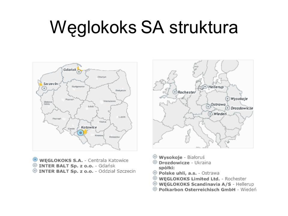 Węglokoks SA struktura
