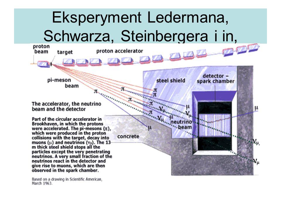 Eksperyment Ledermana, Schwarza, Steinbergera i in,
