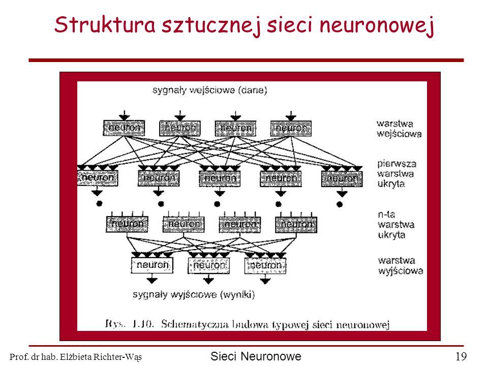 Prof. dr hab. Elżbieta Richter-Wąs 19 Sieci Neuronowe Struktura sztucznej sieci neuronowej