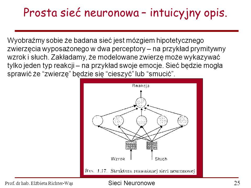 Prof. dr hab. Elżbieta Richter-Wąs 25 Sieci Neuronowe Prosta sieć neuronowa – intuicyjny opis. Wyobraźmy sobie że badana sieć jest mózgiem hipotetyczn