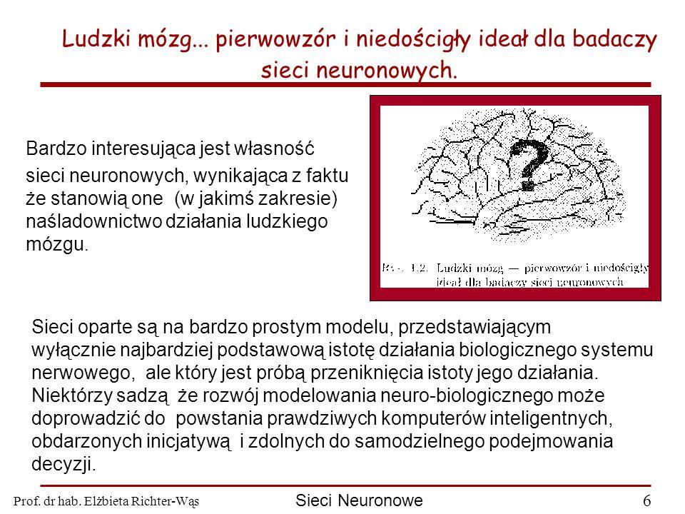Prof.dr hab. Elżbieta Richter-Wąs 6 Sieci Neuronowe Ludzki mózg...
