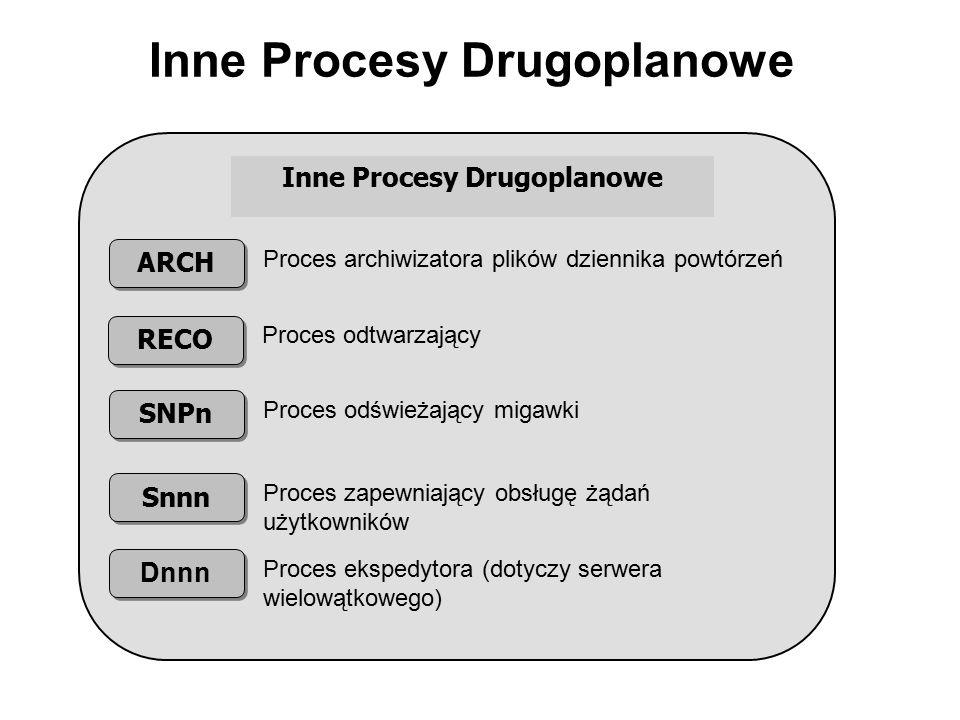 Inne Procesy Drugoplanowe ARCH Proces archiwizatora plików dziennika powtórzeń RECO SNPn Snnn Dnnn Proces odtwarzający Proces odświeżający migawki Pro
