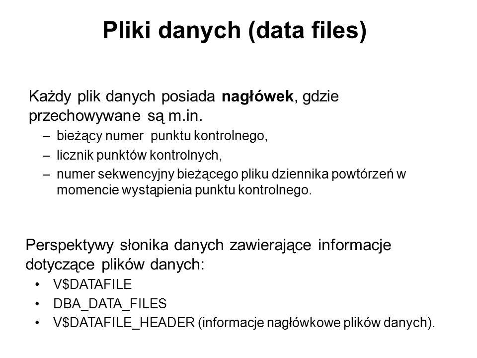 Pliki danych (data files) Każdy plik danych posiada nagłówek, gdzie przechowywane są m.in. –bieżący numer punktu kontrolnego, –licznik punktów kontrol