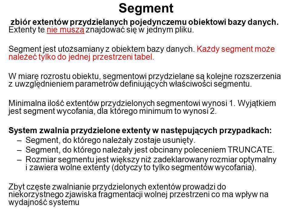 Segment zbiór extentów przydzielanych pojedynczemu obiektowi bazy danych. Extenty te nie muszą znajdować się w jednym pliku. Segment jest utożsamiany