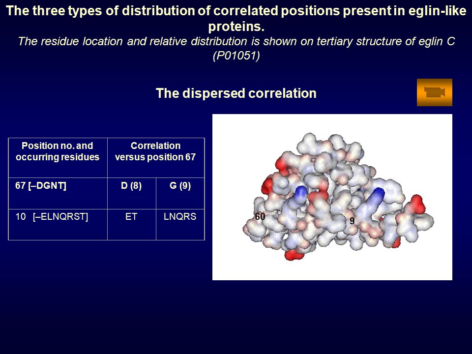 The three types of distribution of correlated positions present in eglin-like proteins.