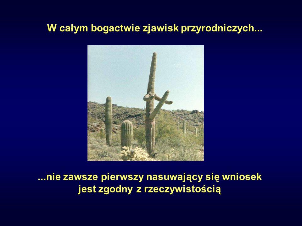 ...nie zawsze pierwszy nasuwający się wniosek jest zgodny z rzeczywistością W całym bogactwie zjawisk przyrodniczych...