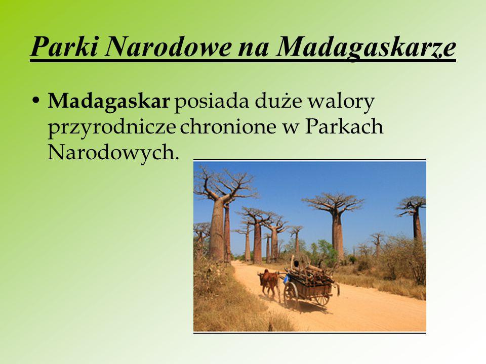 Parki Narodowe na Madagaskarze Madagaskar posiada duże walory przyrodnicze chronione w Parkach Narodowych.
