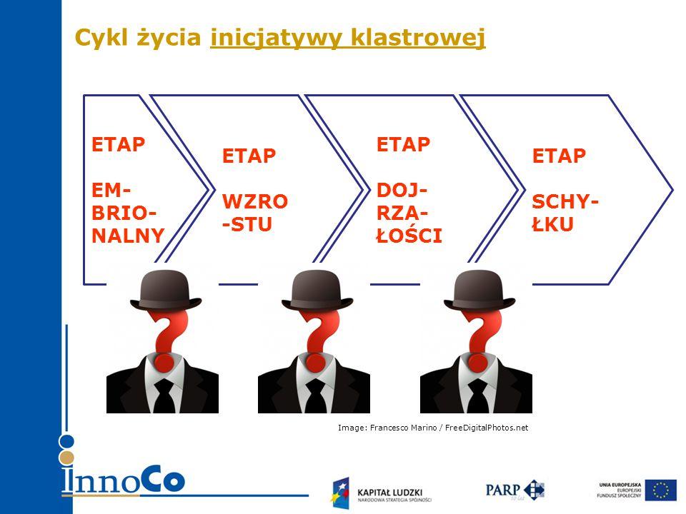 ETAP EM- BRIO- NALNY ETAP WZRO -STU ETAP DOJ- RZA- ŁOŚCI ETAP SCHY- ŁKU Cykl życia inicjatywy klastrowej Image: Francesco Marino / FreeDigitalPhotos.net