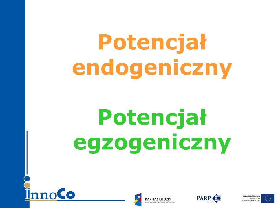 Potencjał endogeniczny Potencjał egzogeniczny