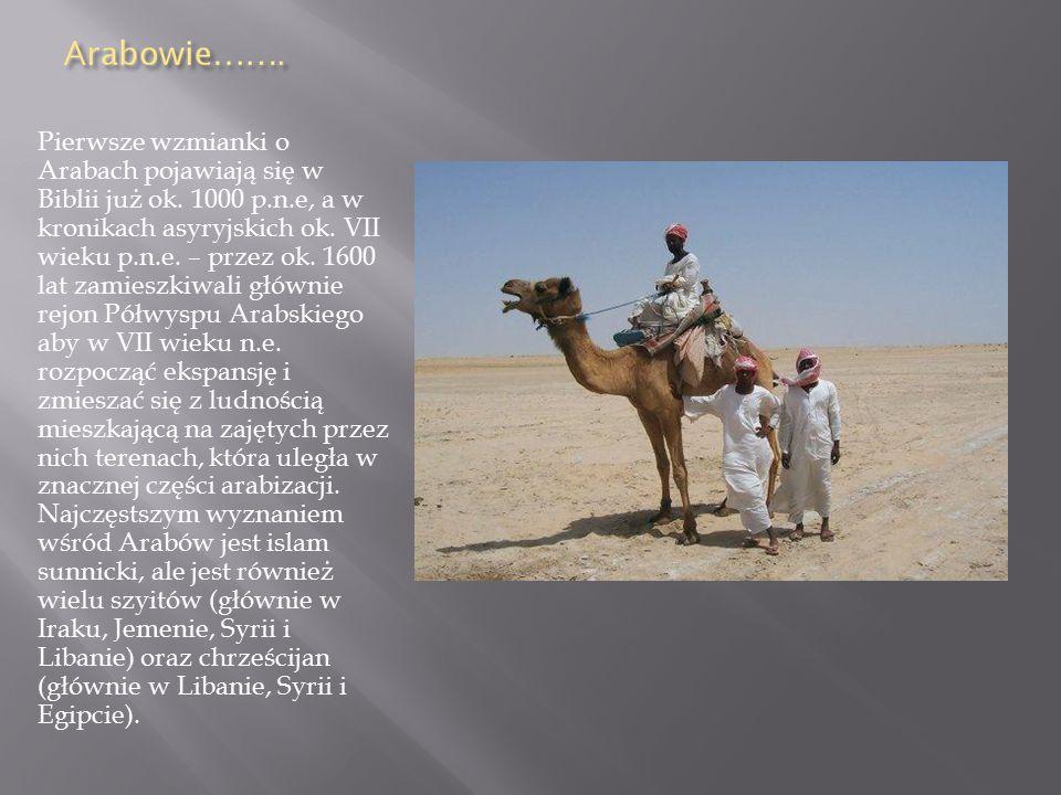 Pierwsze wzmianki o Arabach pojawiają się w Biblii już ok.