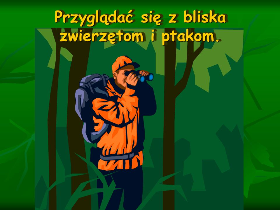 Być może i Wy zechcecie odpoczywać wraz z kolegami w lesie.
