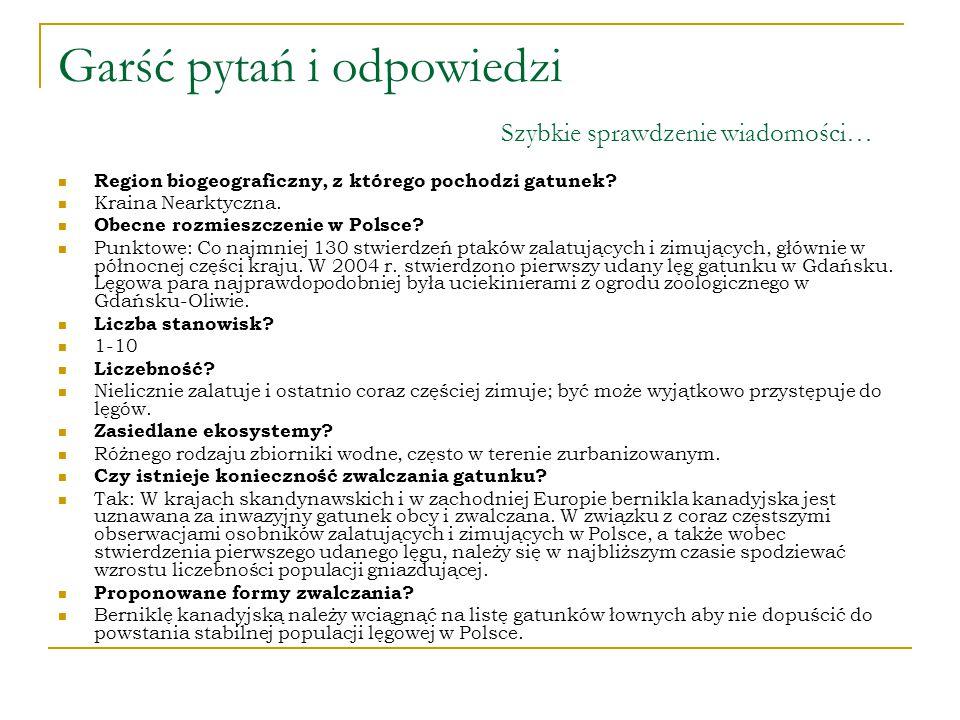 BERNIKLA KANADYJSKA Prezentacje przygotowała: Marlena Jakubiak