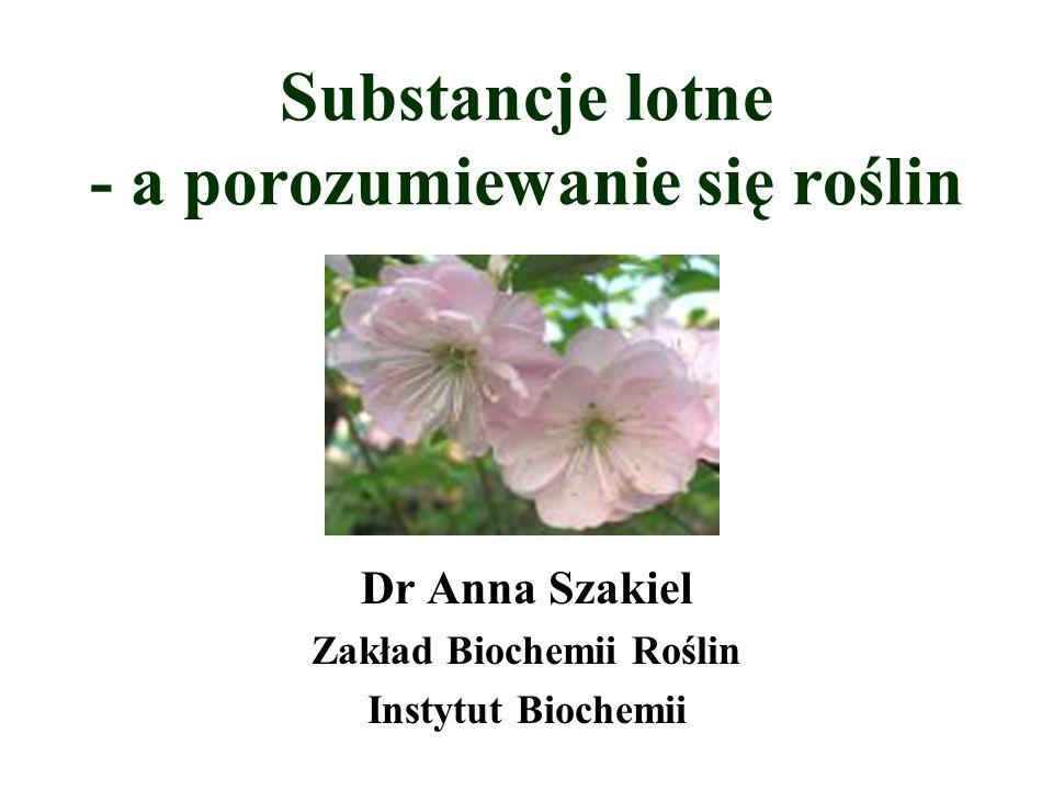 Substancje lotne - a porozumiewanie się roślin Dr Anna Szakiel Zakład Biochemii Roślin Instytut Biochemii