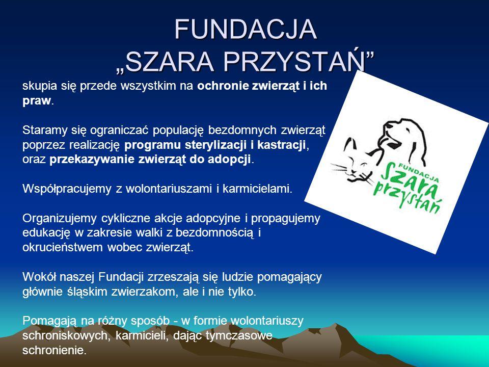 """FUNDACJA """"SZARA PRZYSTAŃ"""" skupia się przede wszystkim na ochronie zwierząt i ich praw. Staramy się ograniczać populację bezdomnych zwierząt poprzez re"""