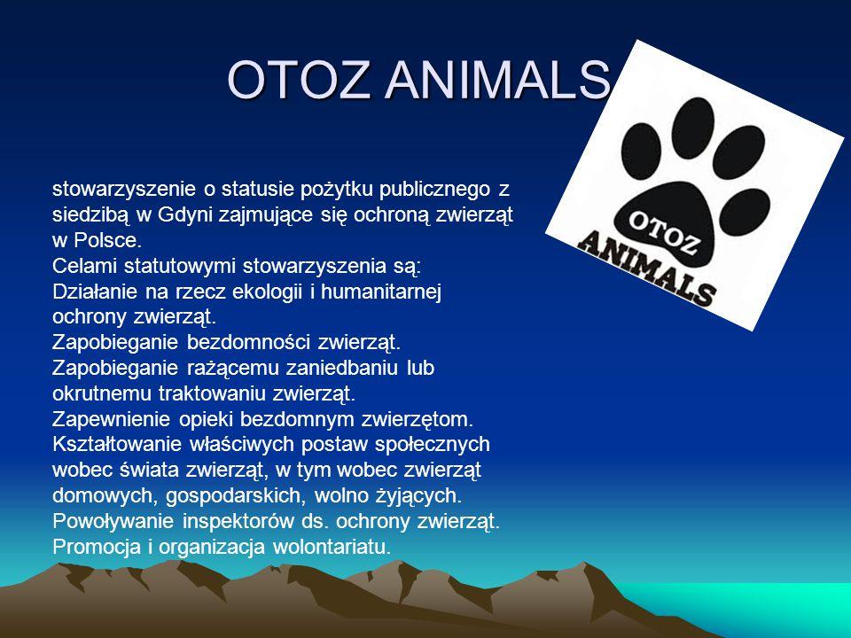 OTOZ ANIMALS OTOZ ANIMALS stowarzyszenie o statusie pożytku publicznego z siedzibą w Gdyni zajmujące się ochroną zwierząt w Polsce. Celami statutowymi