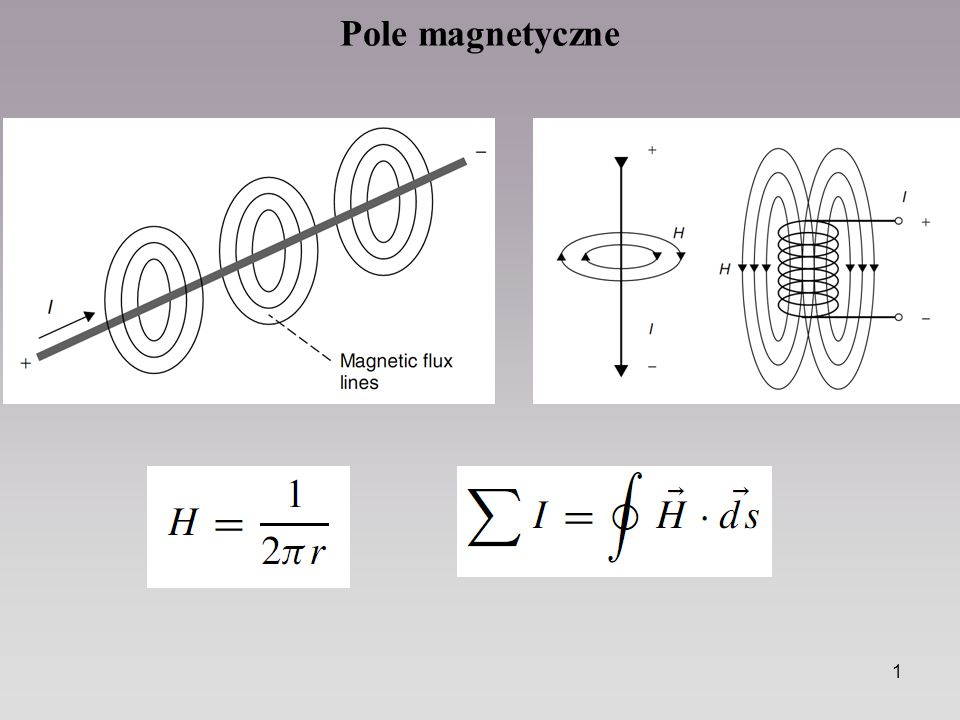1 Pole magnetyczne