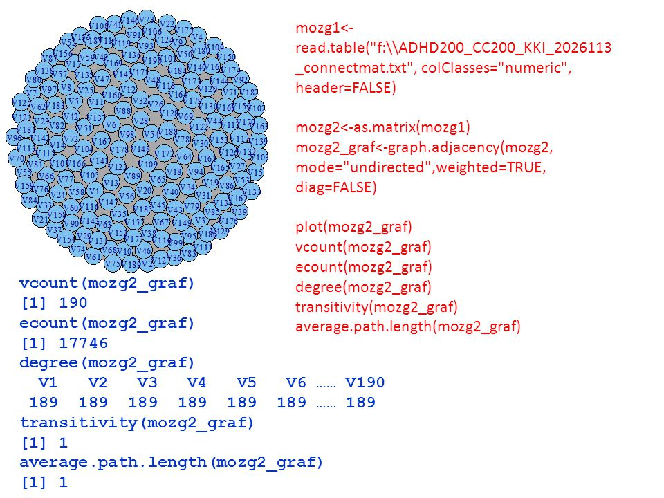 mozg1<- read.table(