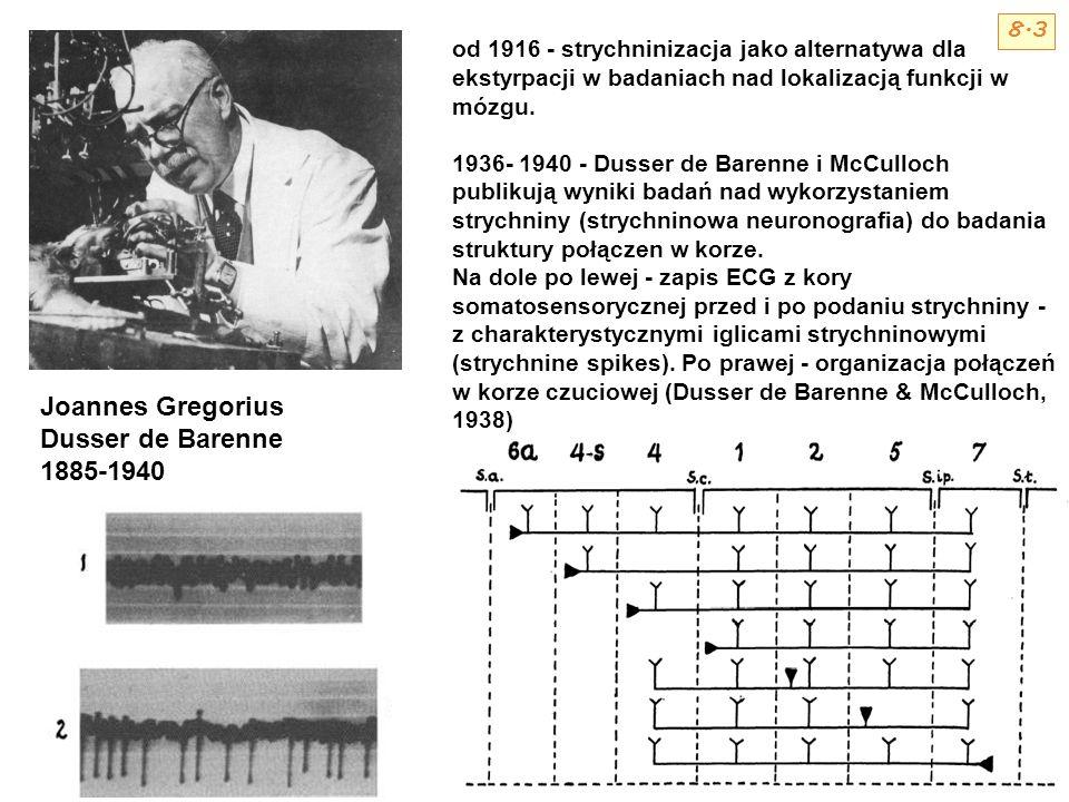 Joannes Gregorius Dusser de Barenne 1885-1940 od 1916 - strychninizacja jako alternatywa dla ekstyrpacji w badaniach nad lokalizacją funkcji w mózgu.