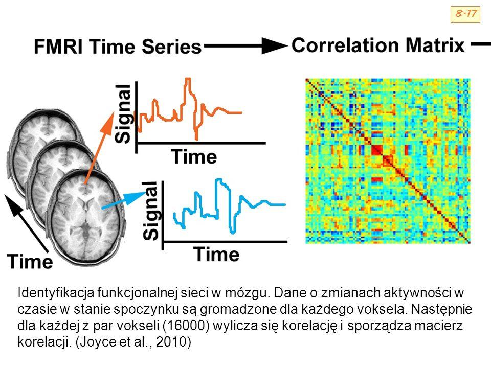 Identyfikacja funkcjonalnej sieci w mózgu. Dane o zmianach aktywności w czasie w stanie spoczynku są gromadzone dla każdego voksela. Następnie dla każ