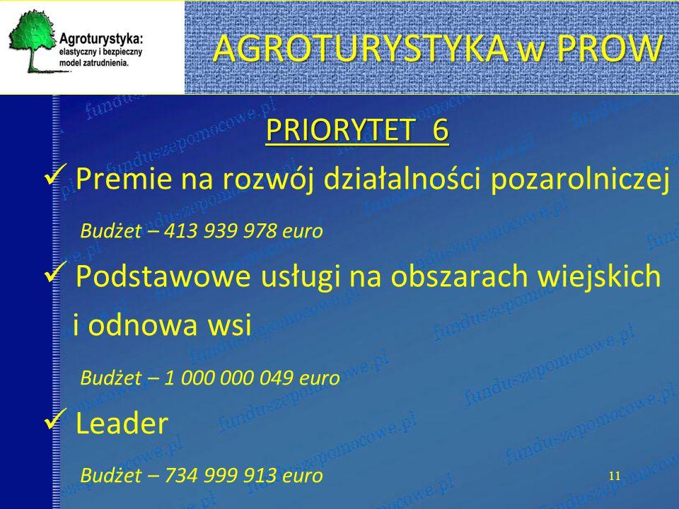 AGROTURYSTYKA w PROW PRIORYTET 6 Premie na rozwój działalności pozarolniczej Budżet – 413 939 978 euro Podstawowe usługi na obszarach wiejskich i odnowa wsi Budżet – 1 000 000 049 euro Leader Budżet – 734 999 913 euro 11