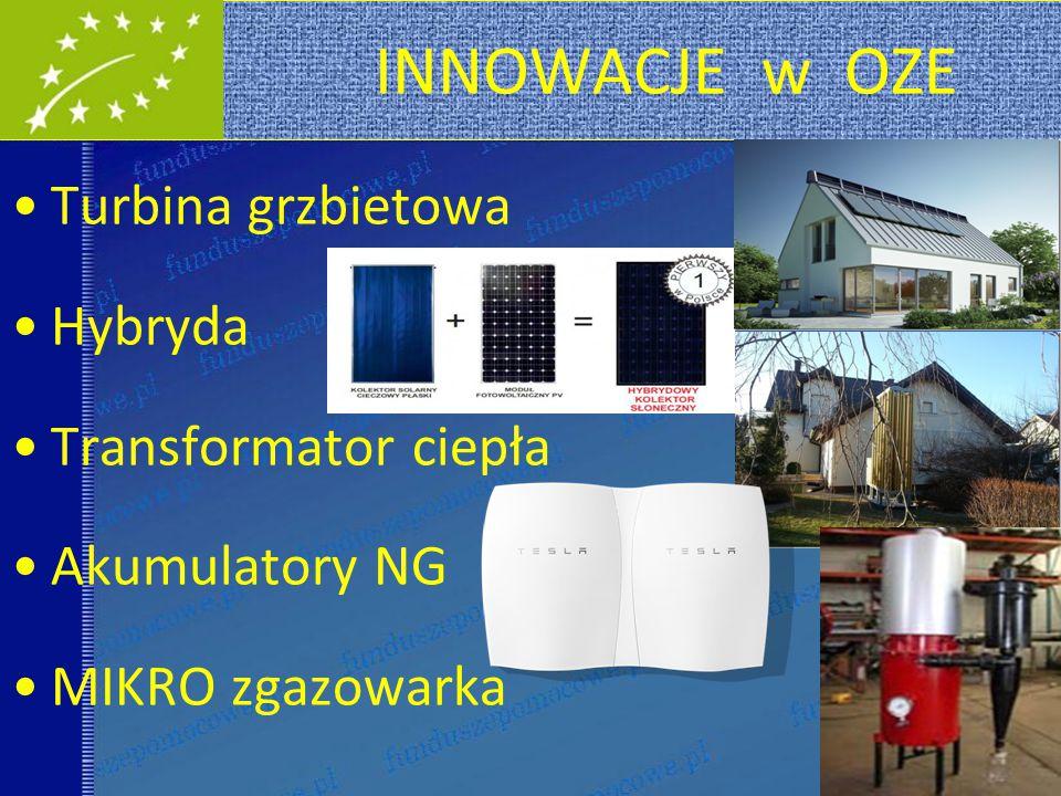 INNOWACJE w OZE Turbina grzbietowa Hybryda Transformator ciepła Akumulatory NG MIKRO zgazowarka 30