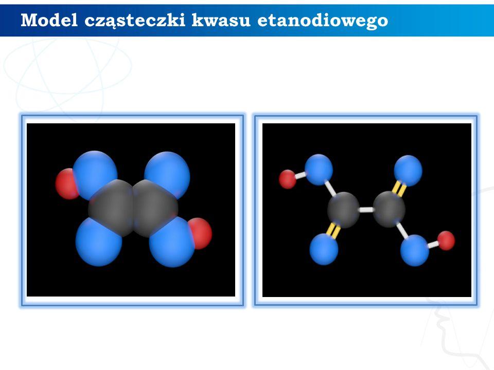 Model cząsteczki kwasu etanodiowego